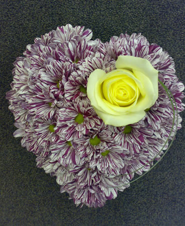 chrysanth heart