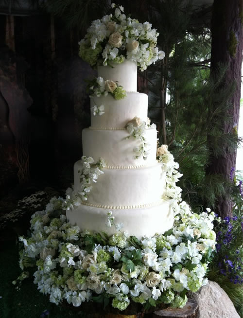 Breaking Dawn wedding cake