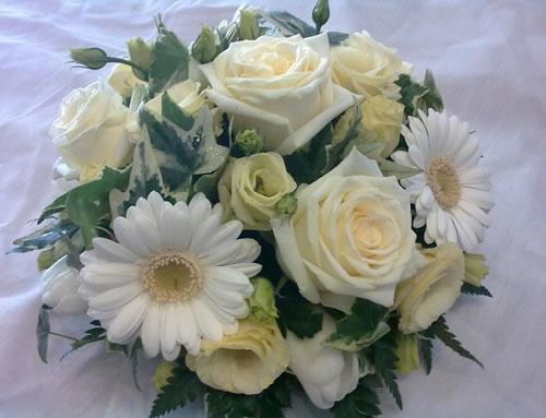 maroussia rose