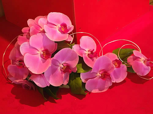 phalaenopsis-wedding-bouquet