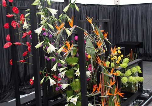 east-surrey-college-tatton-flower-show