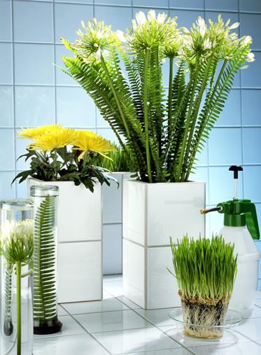 agapanthus-vase-arrangement