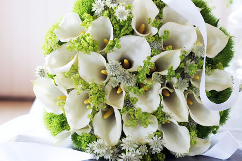 Wedding Bouquets With Arum Lilies : Green goddess arum lily archives playing with flowers